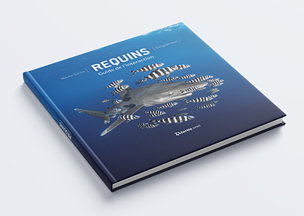 Requins, guide de l'interaction