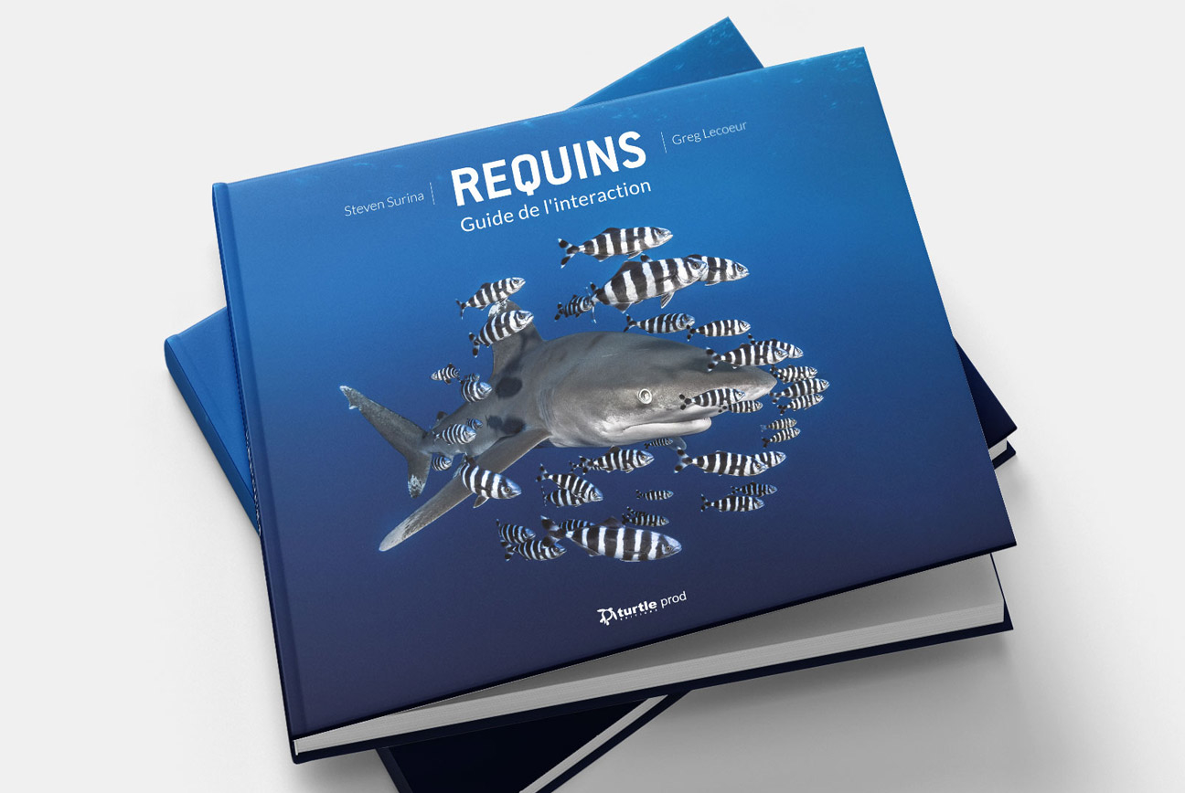 Requins, Guide de l'interaction Par Steven Surina et Greg Lecoeur